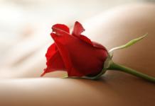 Λουλούδι, https://pagelife.gr//