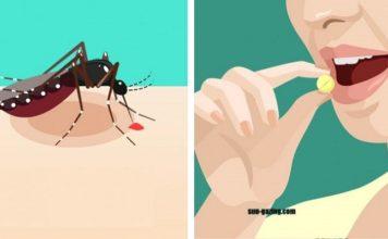 Κουνούπι, https://pagelife.gr/