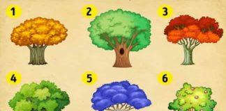 δέντρο, https://pagelife.gr/